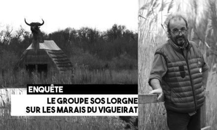 Marais du Vigueirat : le groupe SOS lorgne sur la gestion des espaces naturels
