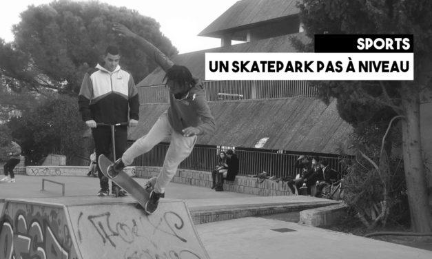 Un skatepark pas à niveau
